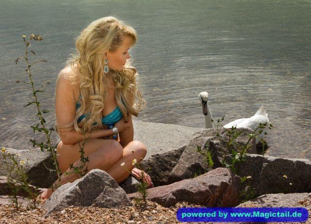 Little Mermaid:tierische Freunde-LGLE79